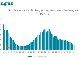 Dengue Rates Fall, But Still a Problem in These Parts of