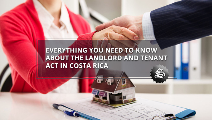 Everything you Need to know About the Landlord and Tenant